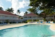 Hotels St Lucia / Find a great hotel in St Lucia with hotelsclick.com
