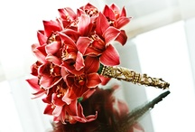 Bouquets / bridal and wedding bouquets