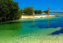 Blue & Green / Azul & Verde Hacienda Tres Rios / The sea, the rivers, the cenotes. / El mar, los ríos, los cenotes. / by Hacienda Tres Ríos Resort, Spa & Nature Park