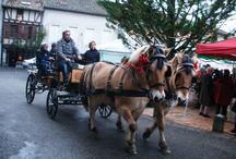 Noël en Pays de Serres / acheter local pour faire plaisir à ces proches à l'occasion du fête placée sous le signe de la magie : Noël. Partagez la convivialité des locaux.