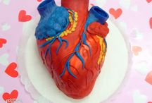 anatómiai szív