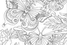 Бабочки раскраски