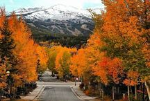 Colorado High Country - Breckenridge & Vail / Pristine mountains, impressive landscapes, epic cycling!  / by At Your Pace Cycling