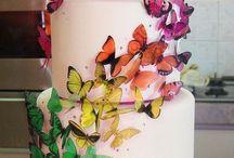 Butterflies/motyle