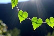 Nature's Hearts / by Debby Lakerveld