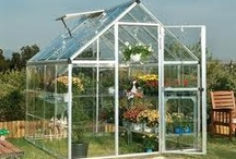 Glass/greenhouses