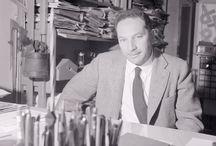 Albe Steiner