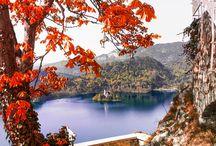 P. Autumn image