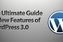 Best WordPress Development Services / Sparx IT Solutions is a best WordPress development service provider from India. It also offers Custom WordPress development services with 100% satisfaction guarantee in worldwide.