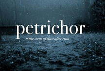 """Petrichor and Litholatry / -And on the pedestal these words appear: """"My name is Ozymandias, king of kings: Look on my works, ye Mighty, and despair!"""" Nothing beside remains. Round the decay Of that colossal wreck, boundless and bare The lone and level sands stretch far away.  Percy Bysshe Shelley, Ozymandias / by Rayya al-Zahra'"""