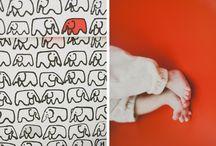 Elephant / Pattern Elephant