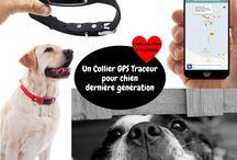 Accessoires pour chiens / Dans ce tableau, vous trouverez des images ou vidéos des accessoires pour chiens disponibles sur la Boutique d'accessoires pour chien Chimey's Paradise.