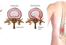 Bone, Joint & Muscle