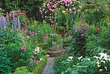 Garden Landscape Designs / dabbiesgardenideas.com