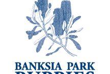 Blog Posts - Banksia Park Puppies / Banksia Park Puppies official blog posts