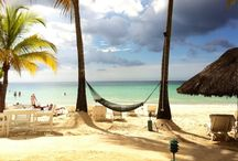 Travel / jamaica attractions