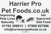 Harrier Pro Products / Information and images relating to our current products.