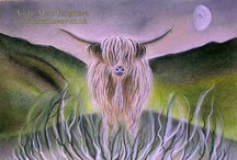 Highland Cows / A selection of my own art work