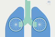 Bikes / fun bike ideas