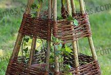 Tressage pour plante grimpante
