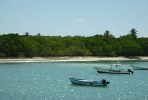 Buccoo, Tobago / Eindrücke von Strand, Meer und Riff in und um Buccoo, Tobago.