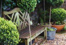 Ideer til haven og orangeriet