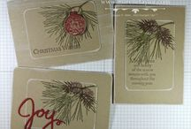 SU Ornamental Pine