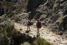 Camino Inca / Imágenes del tour Camino Inca