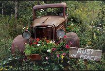 ou kar in tuin