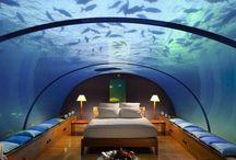 wanna visit