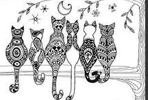 obrázky - kočka