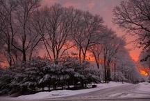 Long Island Winters / Winters on Long Island, NY