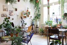 Urban Jungle / Wir haben leider beide keine grünen Daumen, aber wir lieben die Urban Jungle Inspirationen und geben nicht auf! Einige Pflanzen überleben schon mehrere Monate bei uns – es wird. ;-)