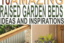 Gardening / Gardening is not only a hobby, it is an art. Pick up some awesome gardening tips through the pins on this board!