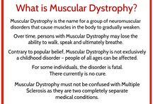 Muscular Dystrophy / I hope you find this information on Muscular Dystrophy helpful