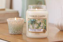 YANKEE CANDLE / Le collezioni Yankee Candle e le nostre foto