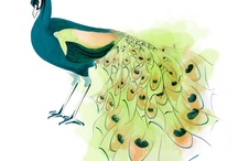 Animal Art: birds / by Abbey Trescott