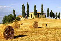 Toscana / by Julia