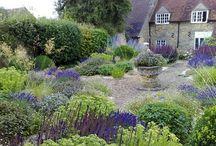 english garden / by Ellery Flynn