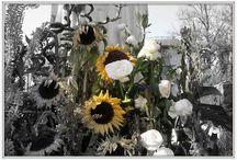 FIORI - FLOWERS / Fiori