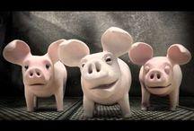 Animals / by Madeleine @ NZ Ecochick