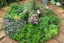 Small herb garden - inspiration