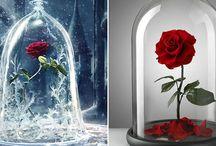 Вечная роза в колбе  идеальный подарок .