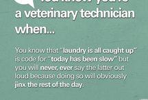 The Life of a Vet Tech