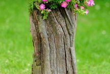 Trocó de maderas con flores
