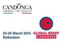 GLOBAL BERRY CONGRESS 2015 / Global Berry congress 23-25 March 2015, Rotterdam #candonga #fragola #topquality
