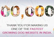 Celebrating Dog Love @DogExpress