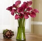 Flowers I Like / by Christy Schmitt