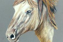 Portraits aux pastels de chevaux / Peintures animalières, portraits de chevaux réalisés aux pastels secs www.artanimalier-annickabrial.com