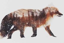Andreas Lie || The Essence of Animals in Arctic Landscapes / Norwegian artist Andreas Lie has perfectly captured the essence of the arctic in his latest double exposure photographs. Since the beginning, the artist has flawlessly merged animals and their rustic surroundings, but his newest works have a fresh quality to them. In focusing solely on wintry landscapes, Lie has added an element of pensiveness to his work.